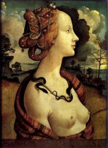 Portrait of Simonetta Vespucci, 1490, Musée Condé,Piero de Cosimo